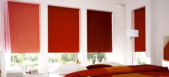 roller blinds newtownards
